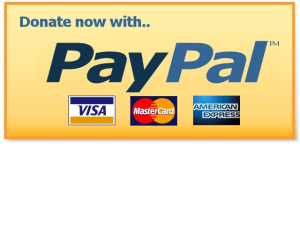 Dummy paypal